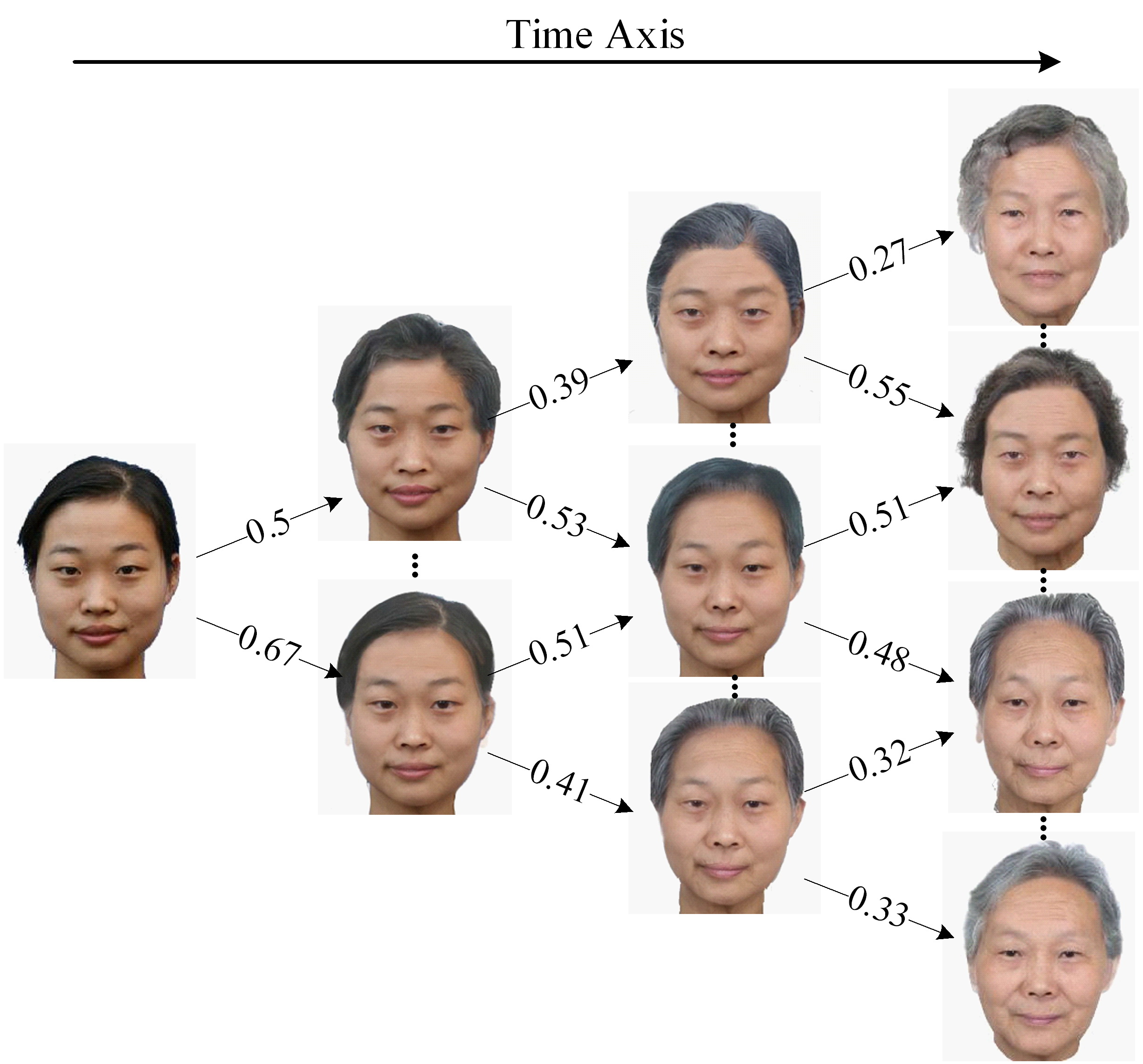 Aging: A Dynamic Model For Face Aging Simulation