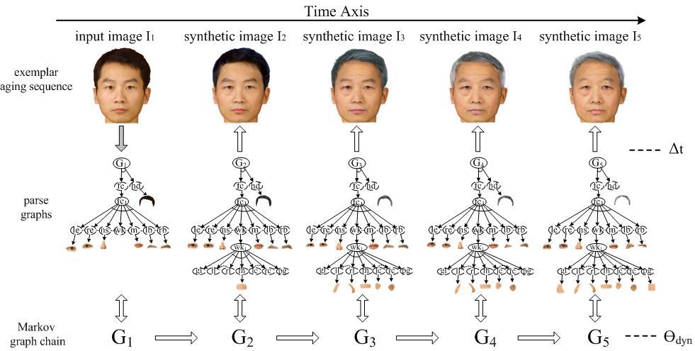 Facial Aging Simulation 10