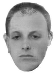 Facial Aging Simulation 113